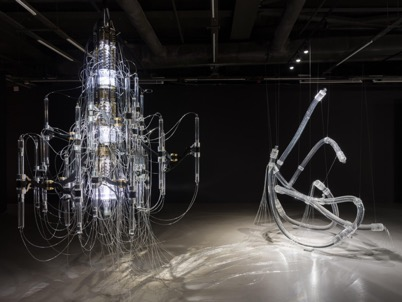 Exhibition showcasing results of three years of arts and science collaborations