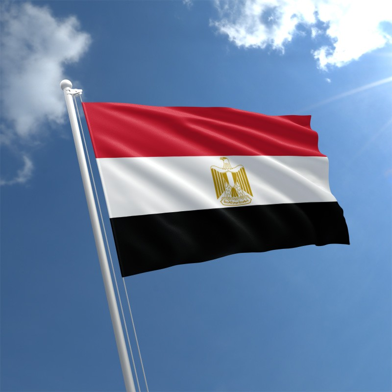 Egypt: Developing Hazardous Waste Management Programme – Phase 1/ Request for Proposals from any country