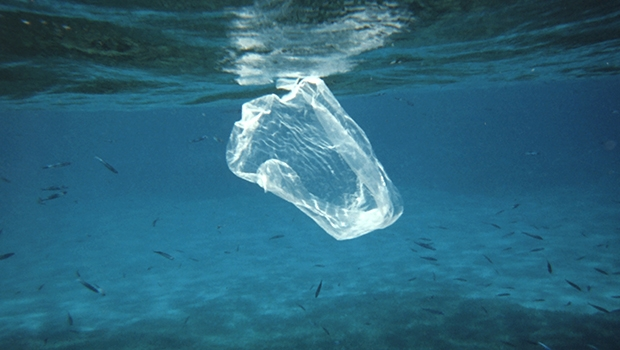 India and Norway launch initiative to combat Marine Pollution